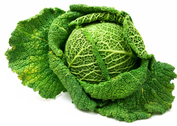 cabbage-garden